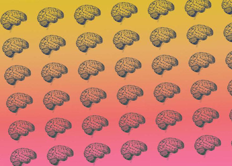 caroline-webb-articles-brain-hack2